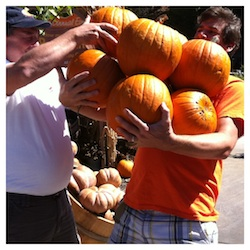 Go Green With All You Can Carry Pumpkins Armstrong Gardens